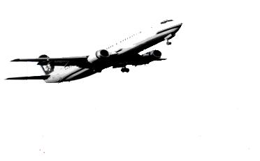 Logo TM Cargas